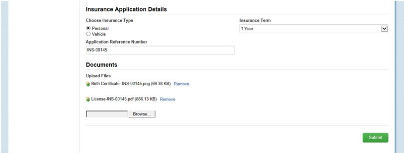 Appian BPM application Details form